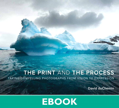 Print and the Process, The: Taking Compelling Photographs from Vision to Expression