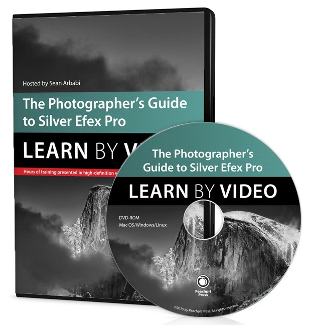 Photographer's Guide to Silver Efex Pro, The: Learn by Video
