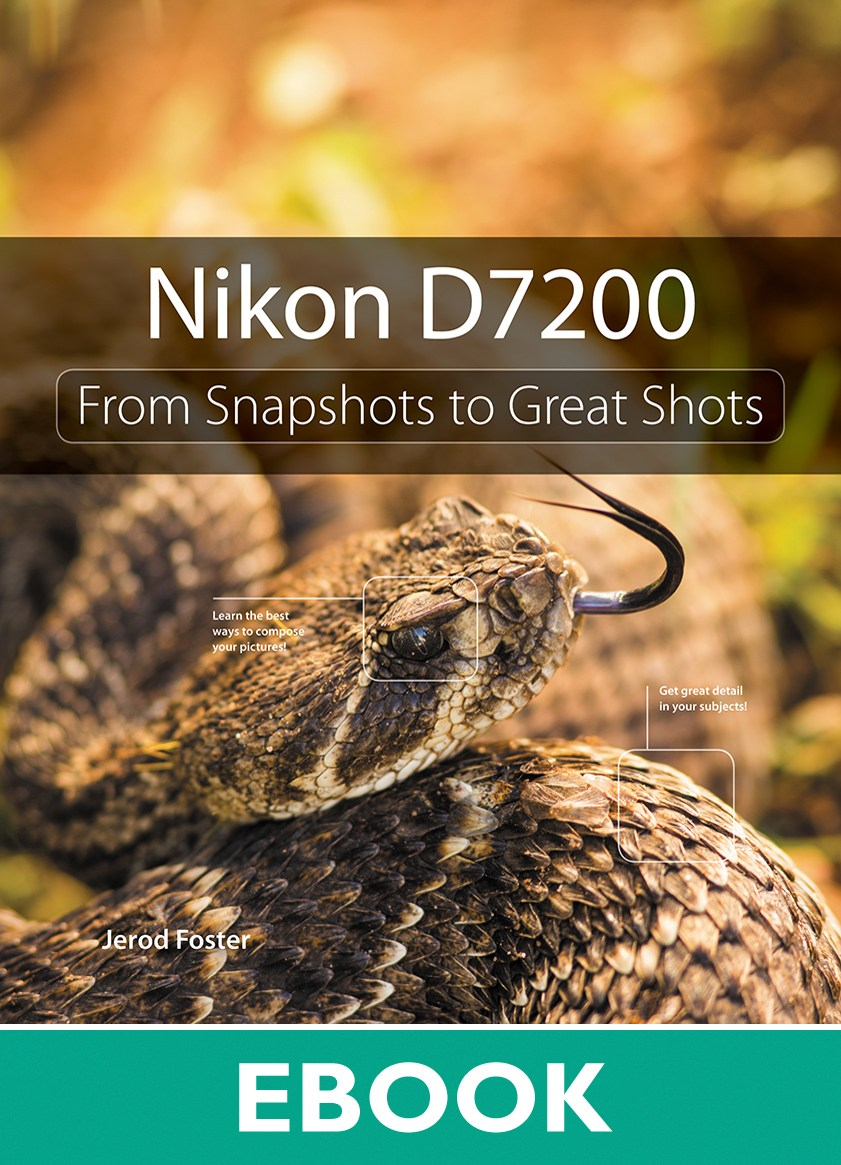 nikon d5200 from snapshots to great shots pdf free download