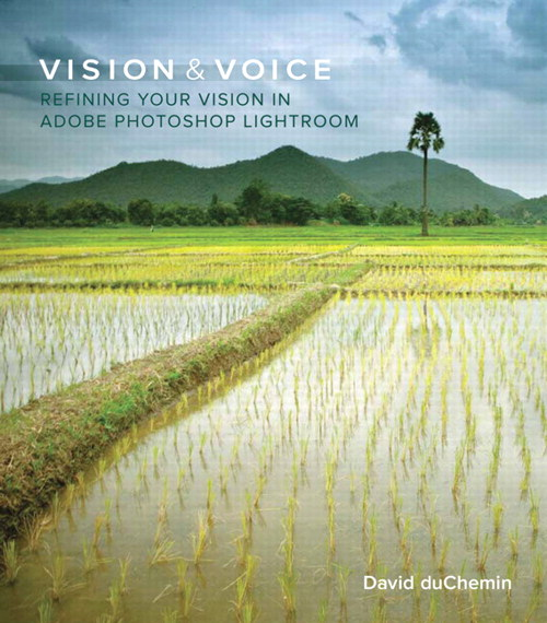 Vision and Voice Book