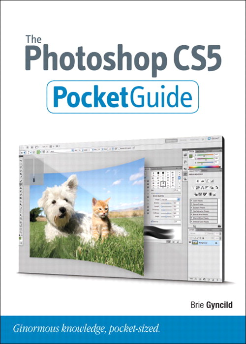 Photoshop CS5 Pocket Guide, The