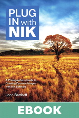 Plug In with Nik: A Photographer's Guide to Creating Dynamic Images with Nik Software