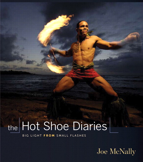 Hot Shoe Diaries, The: Big Light from Small Flashes