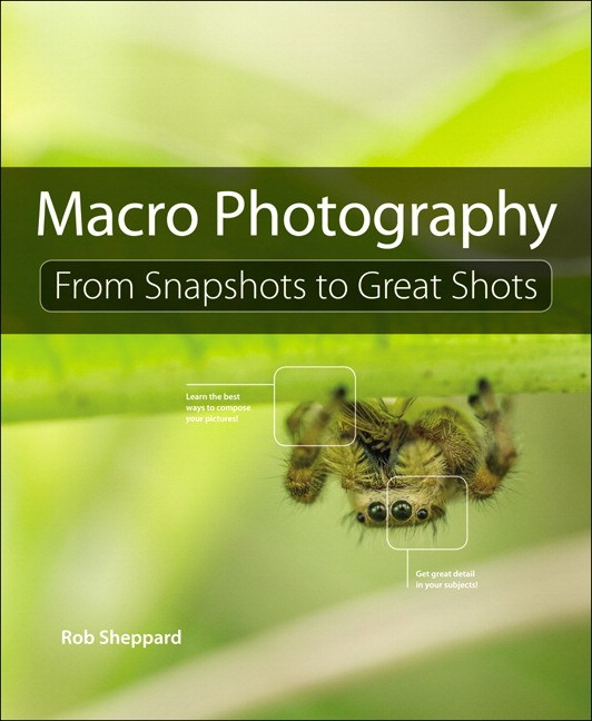 Macro Photography: From Snapshots to Great Shots