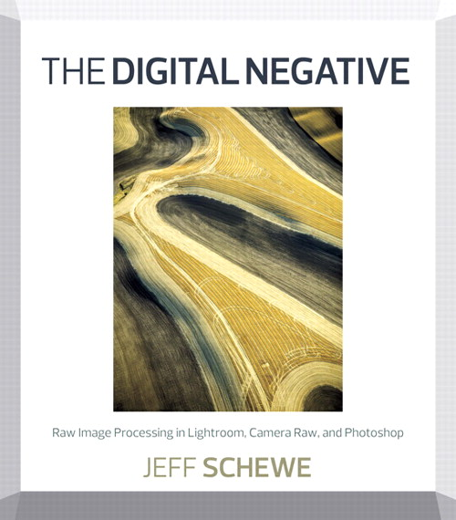 Digital Negative, The: Raw Image Processing in Lightroom, Camera Raw, and Photoshop