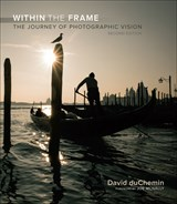 Within the Frame, 2nd Ed.